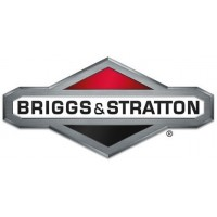 MOTEURS BRIGGS & STRATTON